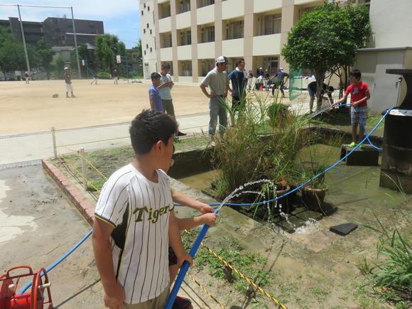 亀池清掃2016